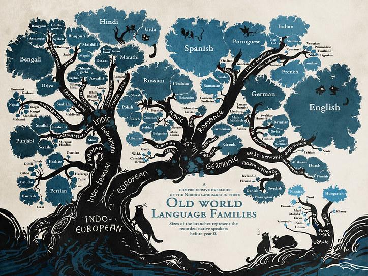 An Indo-European language family tree.